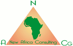 Logo de New Africa Consulting Group